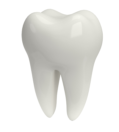 3D Tooth Illustration